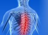 腰背酸痛是什么原因 腰酸背痛的罪魁祸首竟是它