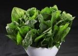 秋天排肠毒吃什么好? 推荐四种有效润肠排毒的食物