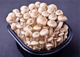 甲状腺结节的病因 甲状腺结节吃什么比较好